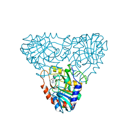 Molmil generated image of 1a9q