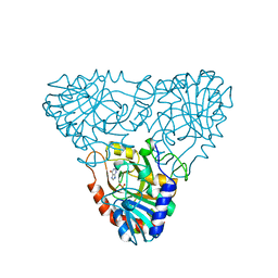 Molmil generated image of 1a9r