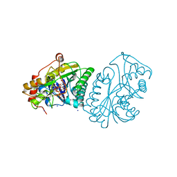 Molmil generated image of 1a9y