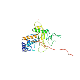 Molmil generated image of 1anv