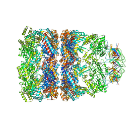 Molmil generated image of 1aon