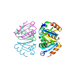 Molmil generated image of 1b4b