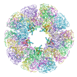 Molmil generated image of 1b5s