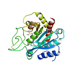 Molmil generated image of 1bav
