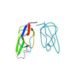 Molmil generated image of 1bdo