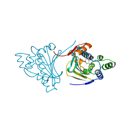 Molmil generated image of 1bgq