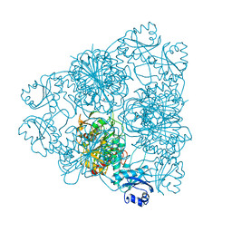Molmil generated image of 1bll