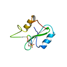 Molmil generated image of 1bm2