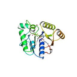 Molmil generated image of 1bs1