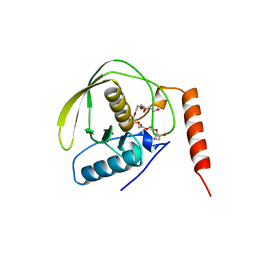 Molmil generated image of 1bs4