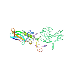 Molmil generated image of 1bvo
