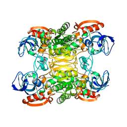 Molmil generated image of 1bxz