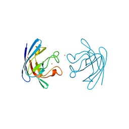 Molmil generated image of 1bzo