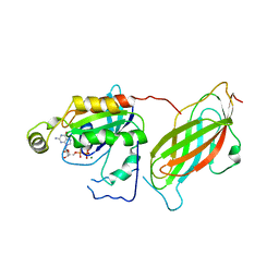 Molmil generated image of 1cc0