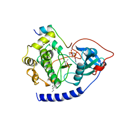 Molmil generated image of 1cdk
