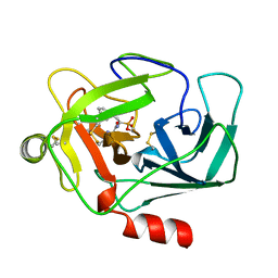 Molmil generated image of 1cgh