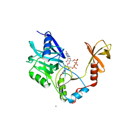 Molmil generated image of 1cko