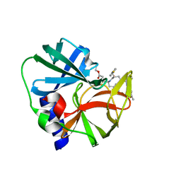 Molmil generated image of 1cqq