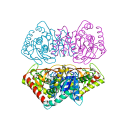 Molmil generated image of 1d3a