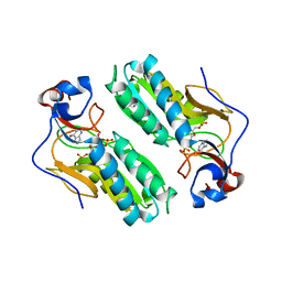 Molmil generated image of 1d6n