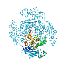 Molmil generated image of 1d7o
