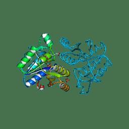 Molmil generated image of 1dak