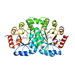 Molmil generated image of 1dbt