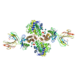 Molmil generated image of 1de4