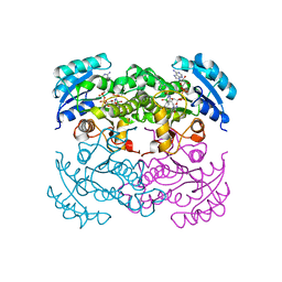 Molmil generated image of 1dfg