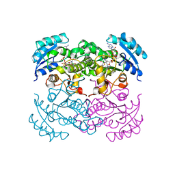 Molmil generated image of 1dfh
