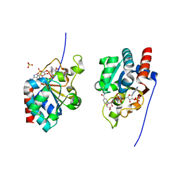 Molmil generated image of 1djl