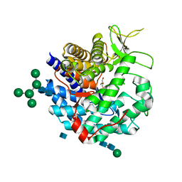 Molmil generated image of 1dl2