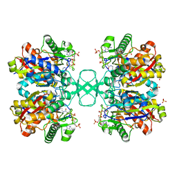 Molmil generated image of 1dm3