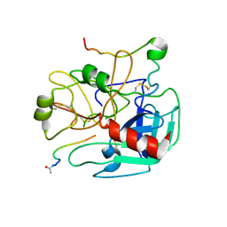 Molmil generated image of 1dm4