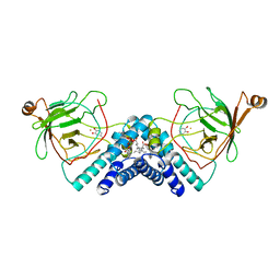 Molmil generated image of 1dmh