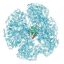 Molmil generated image of 1dpb