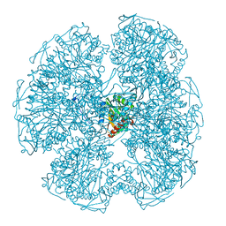 Molmil generated image of 1dpc