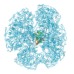 Molmil generated image of 1dpd