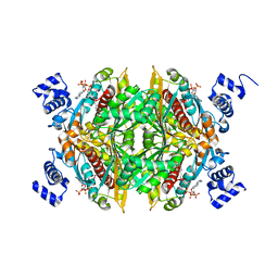 Molmil generated image of 1dq9