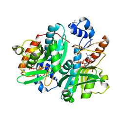 Molmil generated image of 1dqn