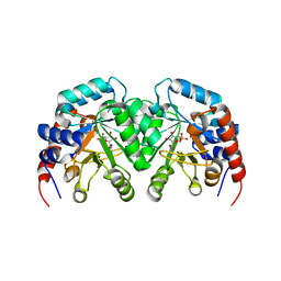 Molmil generated image of 1dqx