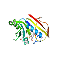 Molmil generated image of 1dr4