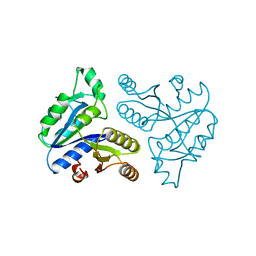 Molmil generated image of 1dts