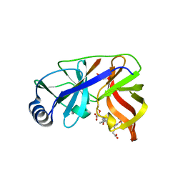 Molmil generated image of 1dy9