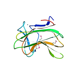 Molmil generated image of 1dyo
