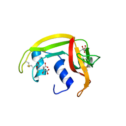 Molmil generated image of 1dyt