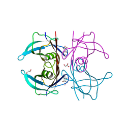 Molmil generated image of 1e4h