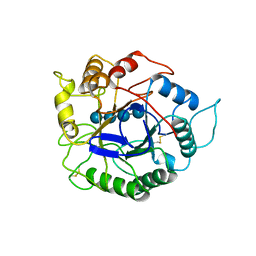 Molmil generated image of 1ece
