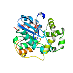 Molmil generated image of 1ehy