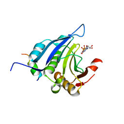 Molmil generated image of 1ejh